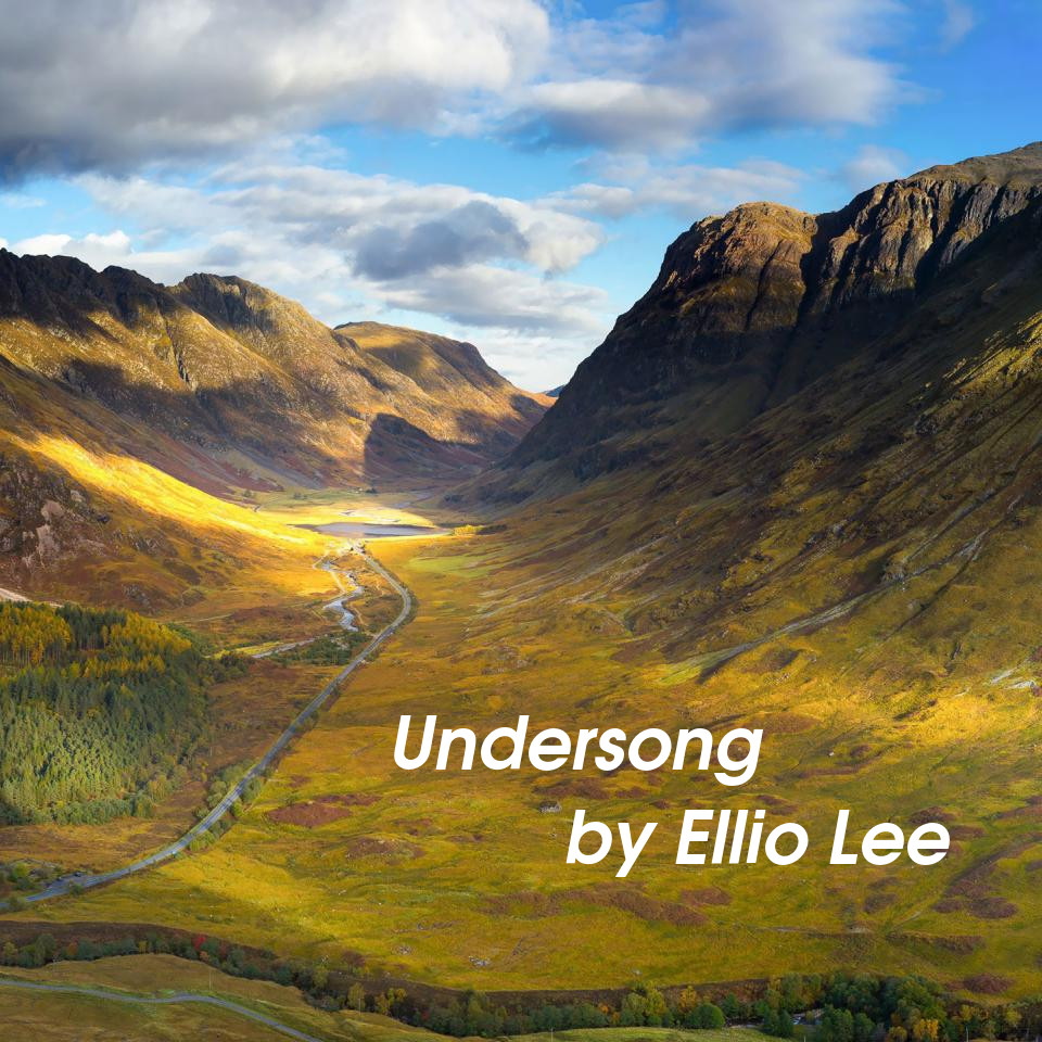 Undersong Cover