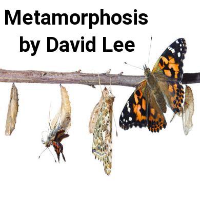 Metamorphosis Feature Cover
